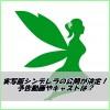 実写版シンデレラの予告動画が公開!イケメン王子等キャストは誰?