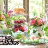 小明【動画】の現在の年収とは?結婚や彼氏について!