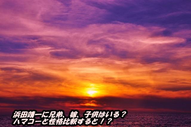 浜田靖一に兄弟、嫁、子供はいる?ハマコーと性格比較すると!?