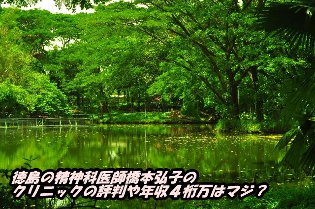 徳島の精神科医師橋本弘子のクリニックの評判や年収4桁万はマジ?