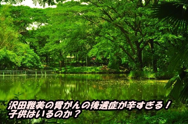 沢田雅美の胃がんの後遺症が辛すぎる!子供はいるのか?